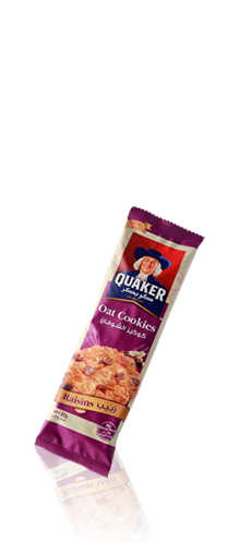 Oat Cookies Raisins